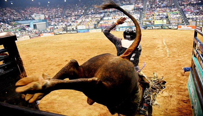 Pbr Australia The Professional Bull Riders